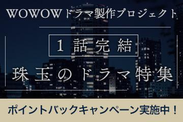 1話完結!珠玉のドラマ特集(ドラマW)ポイントバックキャンペーン