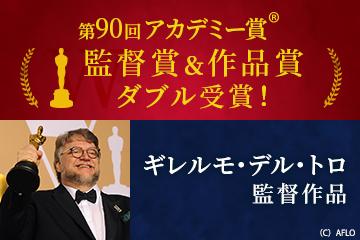 第90回アカデミー賞!監督賞&作品賞 ダブル受賞!ギレルモ・デル・トロ作品