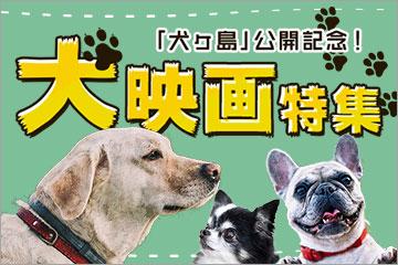 「犬ヶ島」公開記念!犬映画特集